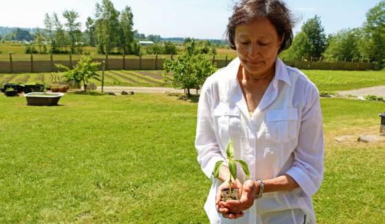 hazelmere-organic-farm-1.jpg
